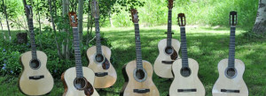 Guitars in the field